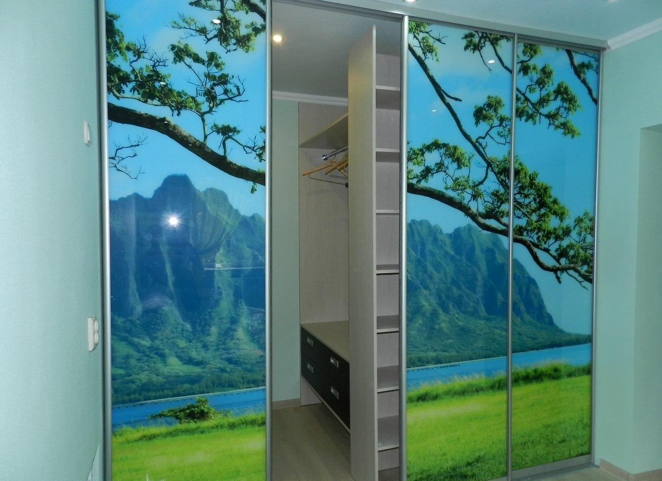 Двери для шкафа купе с фотопечатью раменское